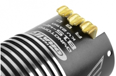 Team Corally - Dynotorq 815 - 1/8 Sensored Wettbewerbs Brushless Motor - 4-Polig - Turns 2D - 2150 KV